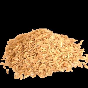 قیمت خرید شلتوک برنج