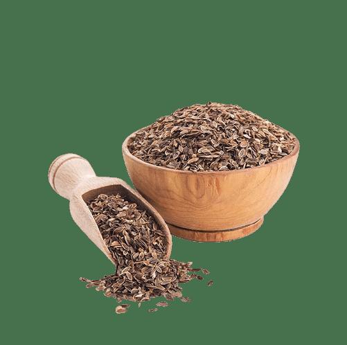 قیمت خرید بذر شوید